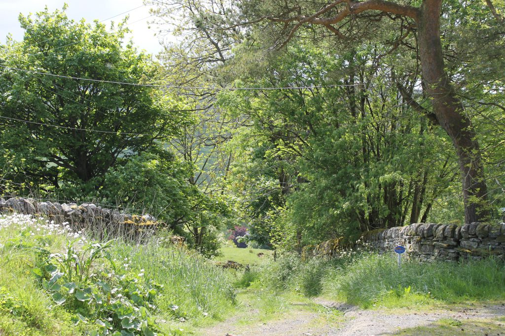 Bridle way from Isaac's Byre to Garrigill.