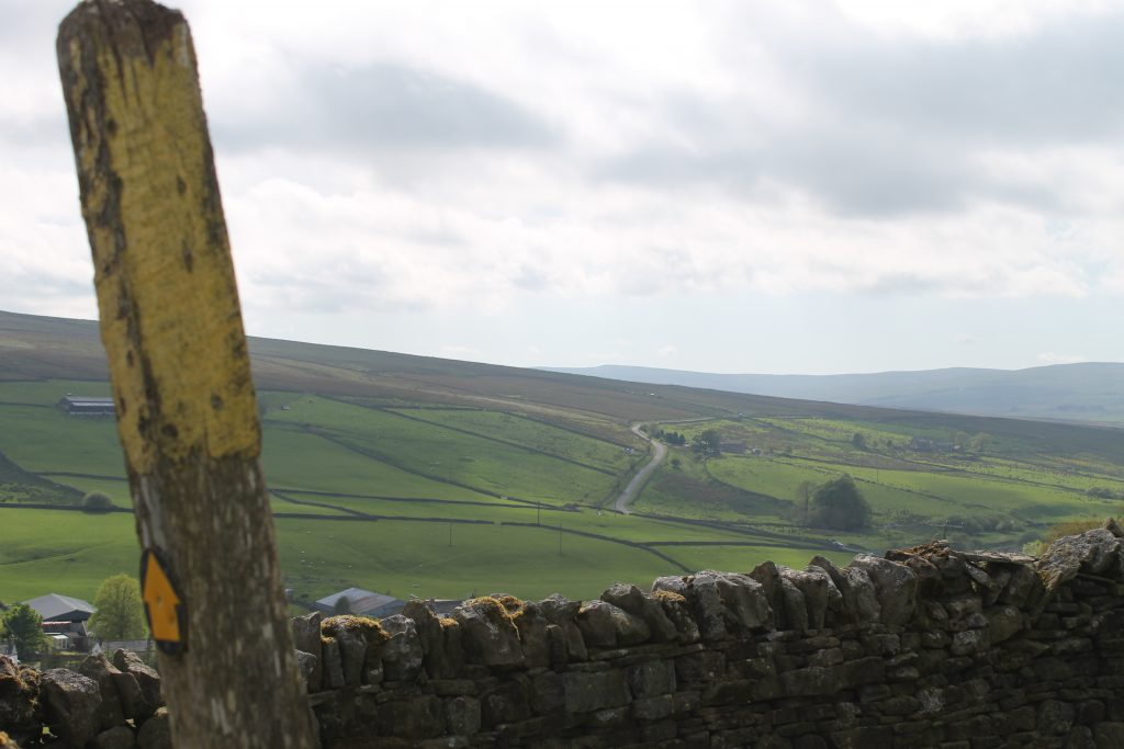 View from Isaac's Byre holiday cottage.